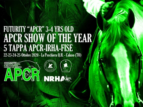 APCR SHOW OF THE YEAR 2020